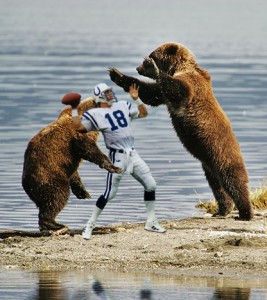 bears-attack-manning